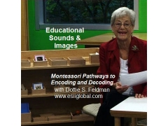 Montessori Pathways to Encoding & Decoding- Teacher DVD
